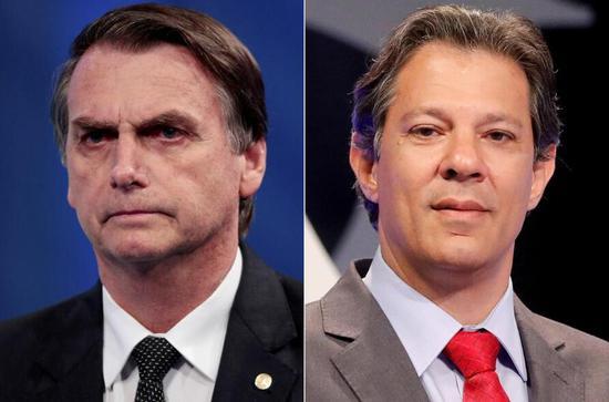 博尔索纳罗和哈达德(图片来源:巴西环球电视网)