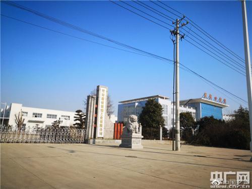 河南康恒玻璃工业有限公司厂区内,记者没有看到有任何开工生产的迹象(央广记者 肖源 摄)