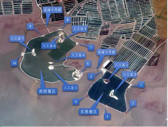 生态环境部:辽宁省凌海市肆意变通,推动实施违法围填海项目