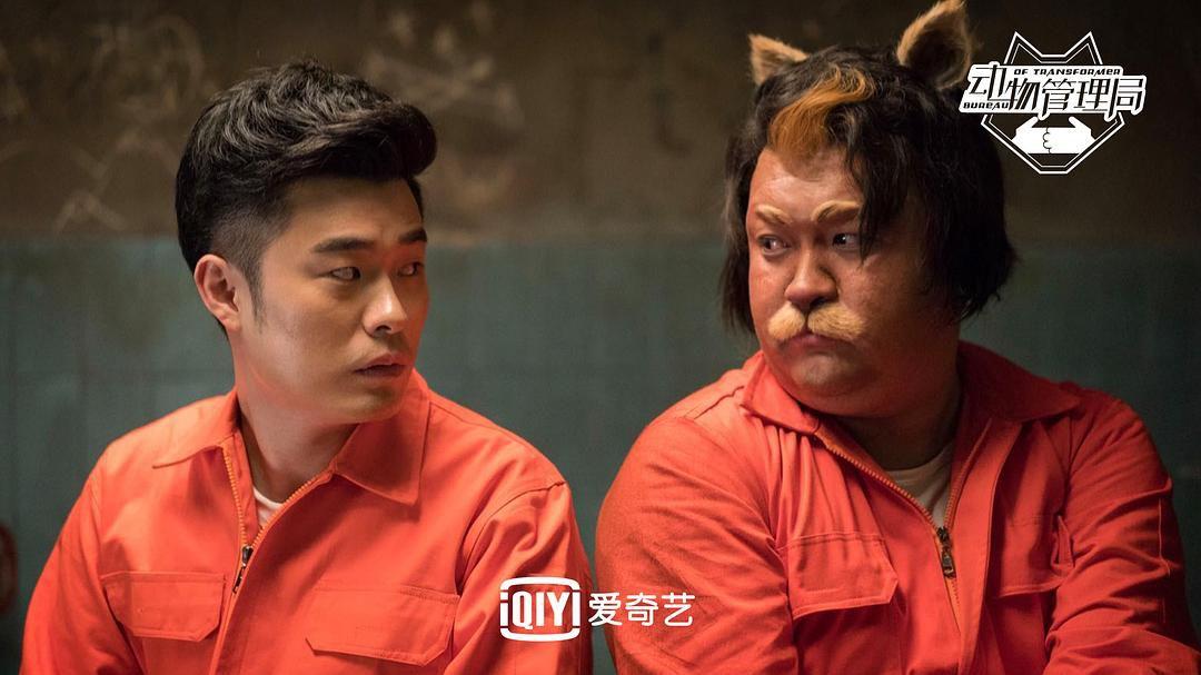 持续探索中国类型剧开发,爱奇山西自修大学艺《动物管理局》会是一次正确答案吗?