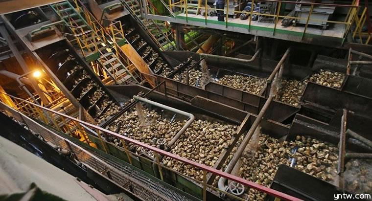 全球甜菜糖第一大国:俄罗斯糖价同比上年跌28%