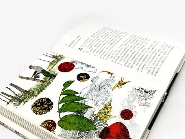 """""""年度最安静美丽的书"""",跟着它,在家环游全"""