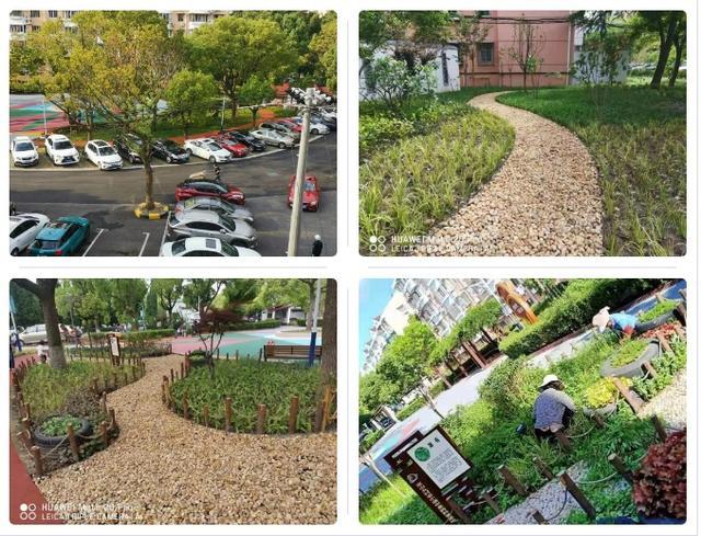 友谊路街道社区园艺师来啦~小区绿化更美了