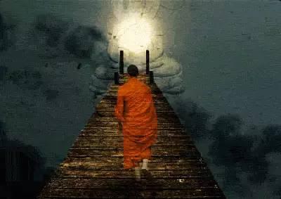 十年480倍,一位学佛者的投资历程及人生感悟,内藤斐奈