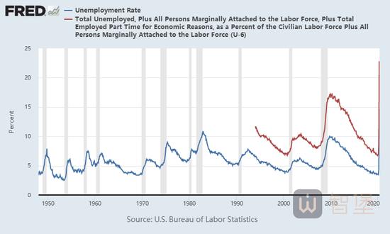 美国5月失业率超预期?分类错了-Conotoxia