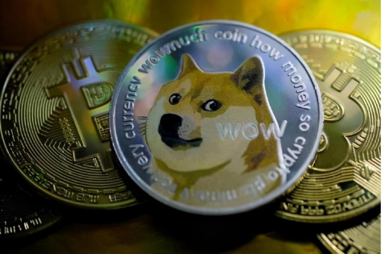 狗狗币十天暴涨450%,马斯克力挺 是泡沫还是第二个比特币?|美元_新浪财经_新浪网