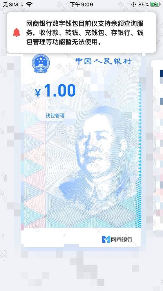 数字人民币钱包点亮网商银行 与六大国有行一样吗?_新浪财经_新浪网