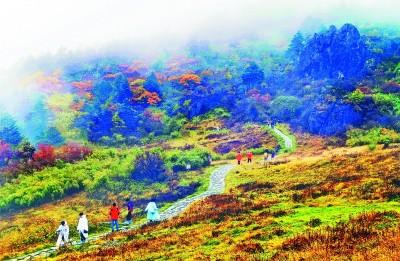 游客在神农架景区游览观光